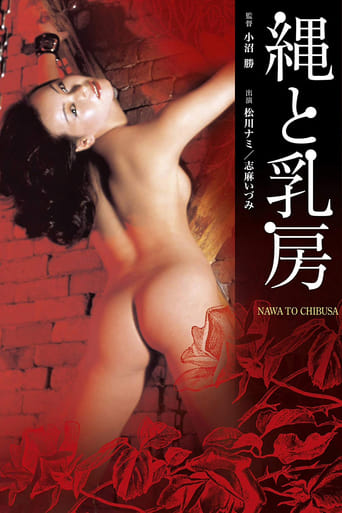 Poster of Rope and Breasts