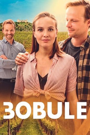 Poster of 3Bobule