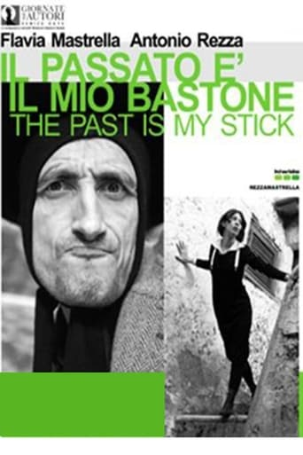 Poster of The Past is My Stick