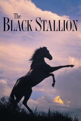 Poster of The Black Stallion