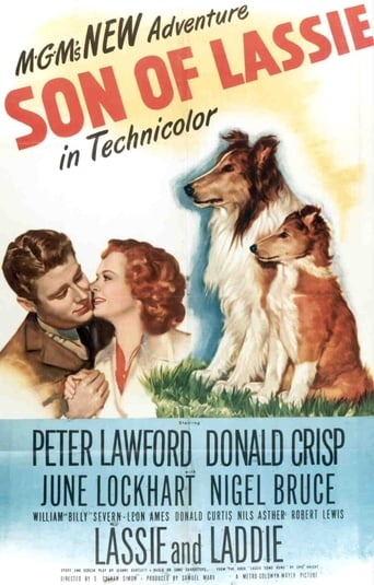 Poster of Son of Lassie