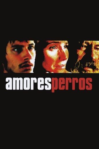 Poster of Amores perros - Láska je kurva