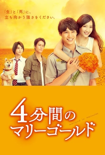 Poster of 四分钟的金盏菊