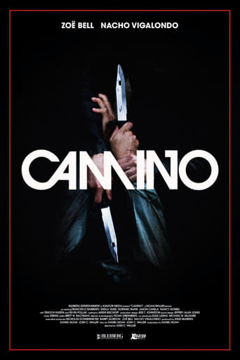 Poster of Camino