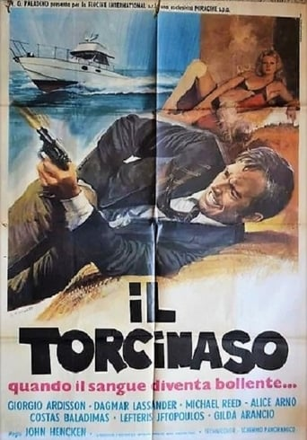 Poster of Il torcinaso