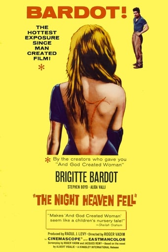 Poster of The Night Heaven Fell