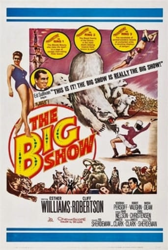 Poster of The Big Show
