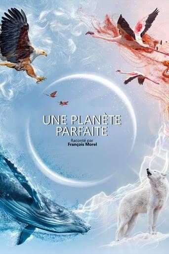 Poster of Une planète parfaite
