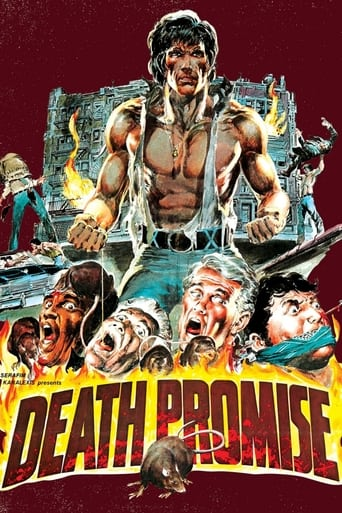 Poster of Death Promise