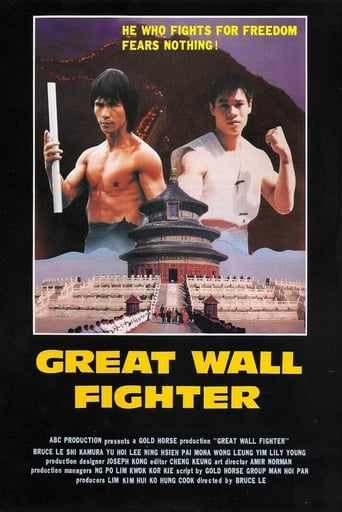 Poster of Fire on the Great Wall