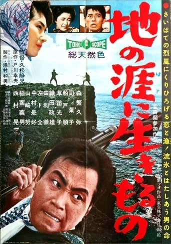 Poster of The Angry Sea