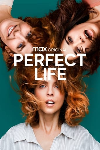 Poster of Perfect Life