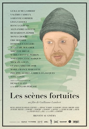 Poster of Les scènes fortuites