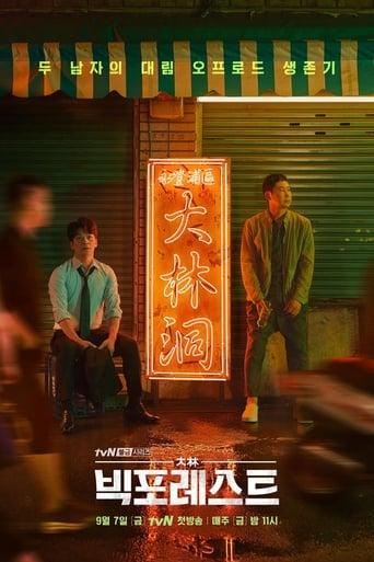 Poster of 빅 포레스트
