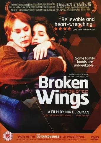 Poster of Broken Wings