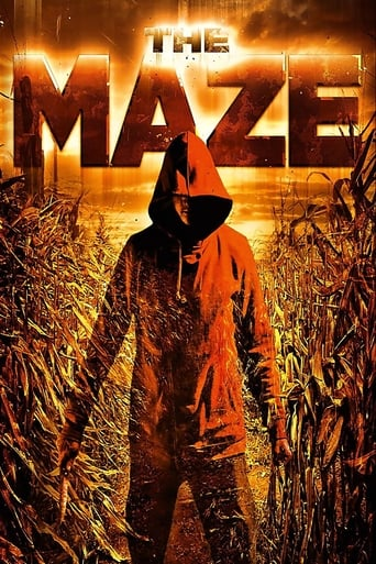 Poster of The Maze