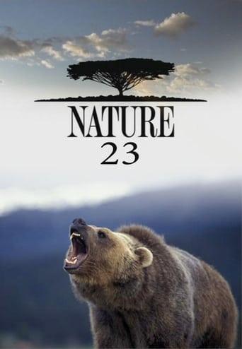 Saison 23 (2004)