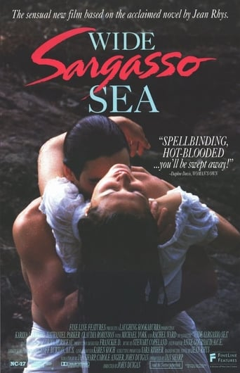 wide sargasso sea and antoinette Four characters, wide sargasso sea's antoinette mason, our house in the last  world's mercedes santinio, and dreaming in cuban's celia and felicia del.