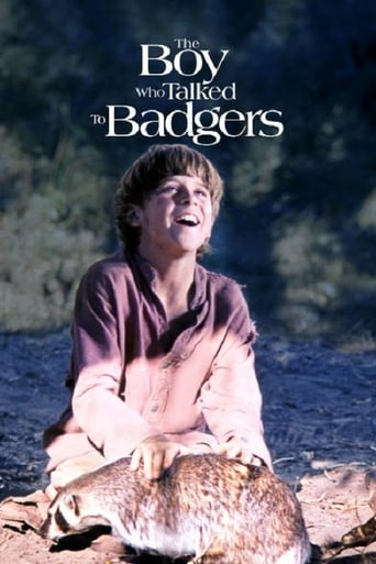 Poster of The Boy Who Talked to Badgers