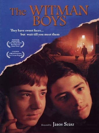 Poster of The Witman Boys