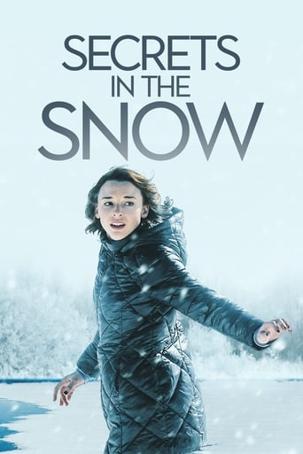 Poster of Secrets in the Snow