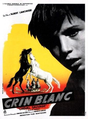 Poster of White Mane