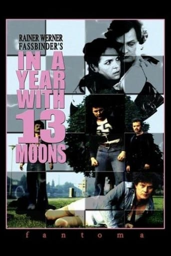 Poster of In a Year with 13 Moons