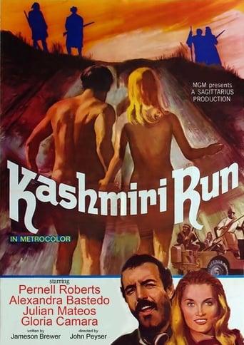 Poster of The Kashmiri Run
