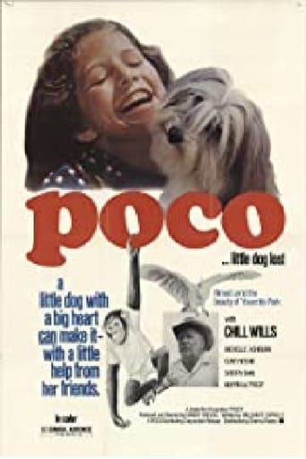 Poster of Poco… Little Dog Lost