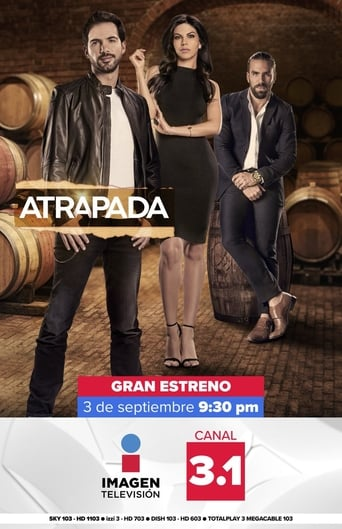 Poster of Atrapada