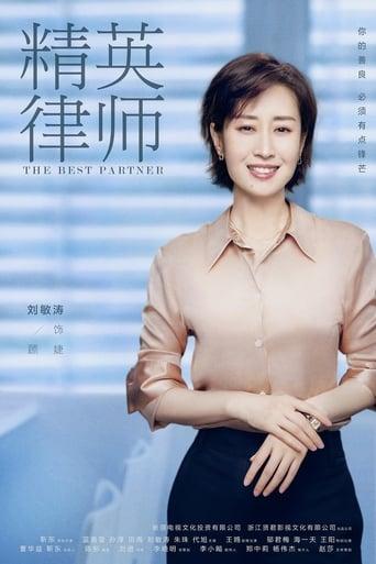 Poster of The Best Partner