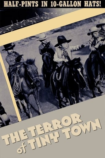 Poster of The Terror of Tiny Town