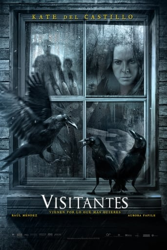 Poster of Visitors