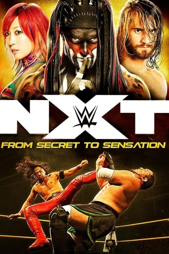 NXT: From Secret To Sensation
