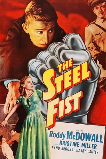 Poster of The Steel Fist