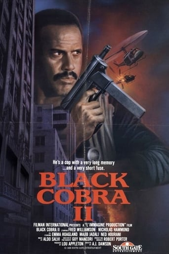 Poster of Black Cobra II