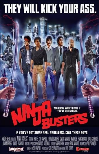 Poster of Ninja Busters