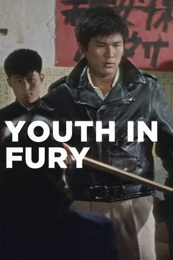 Poster of Youth in Fury