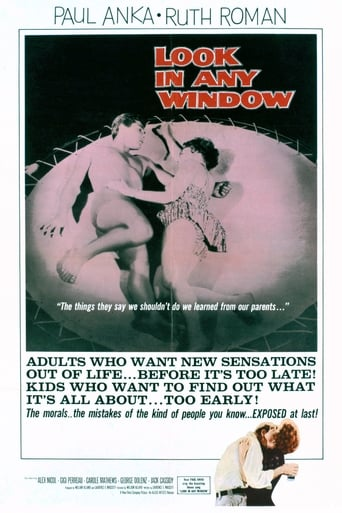 Poster of Look in Any Window
