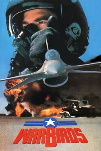 Poster of Warbirds