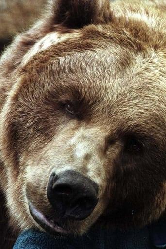 Image of Bart the Bear II