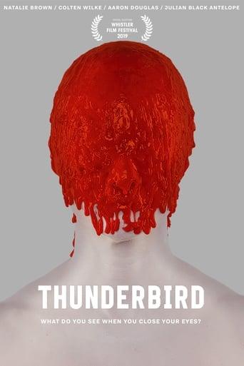 Poster of Thunderbird