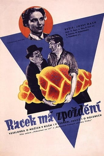 Poster of Racek má zpoždění