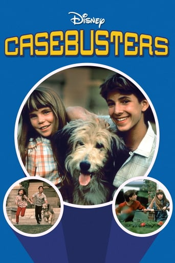 Poster of Casebusters