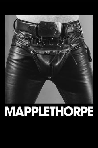Poster of Mapplethorpe
