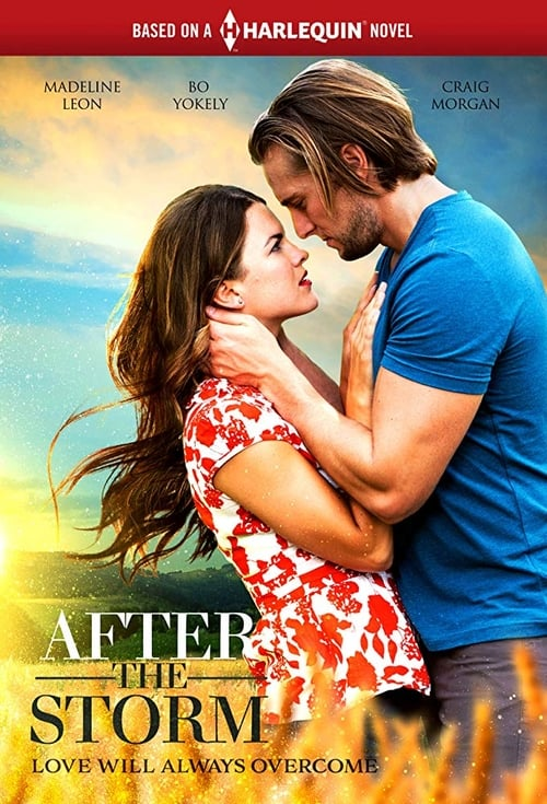 watch After the Storm full movie online stream free HD