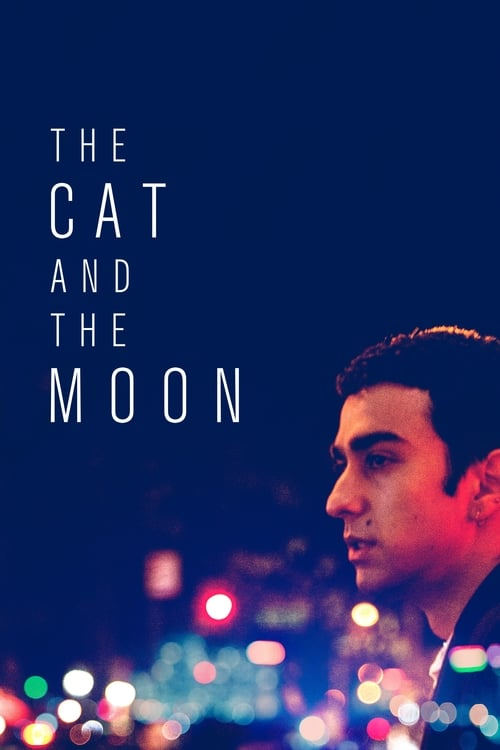 watch The Cat and the Moon full movie online stream free HD