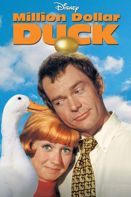 The Million Dollar Duck