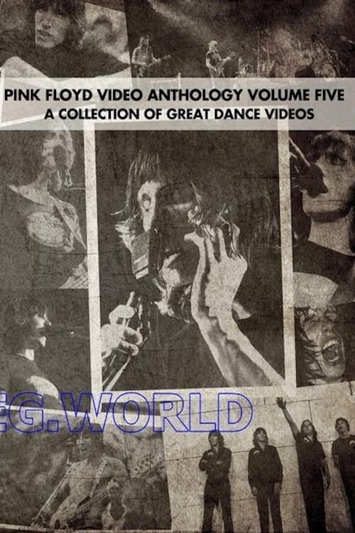Pink Floyd:  Video Anthology Vol. 5