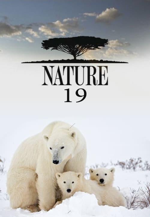 Watch Nature Season 19 Full Movie Download